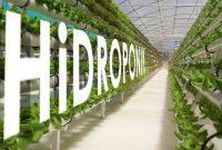 Ide-Bisnis-Agrobisnis-Cocok-di-Kota